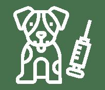 Másters y cursos de animales y veterinaria