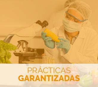 estudiar el curso de biotecnologia alimentaria con prácticas garantizadas
