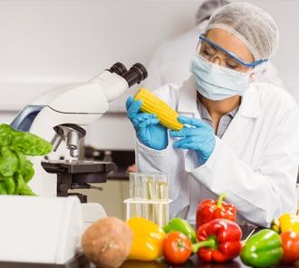 Aprende con el Curso de Biotecnología Alimentaria a crear alimentos y productos más sanos