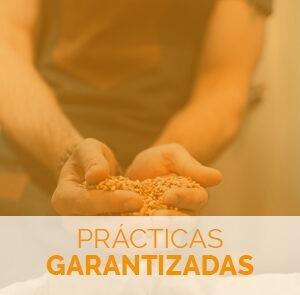 Estudiar el curso de elaboración de malta con prácticas garantizadas