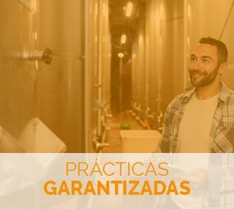 Estudiar el Curso de Elaboración de Vinos y Licores con prácticas garantizadas