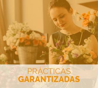 Fórmate con este Curso de Floristería y Arte Floral y aprende todas las técnicas con prácticas garantizadas