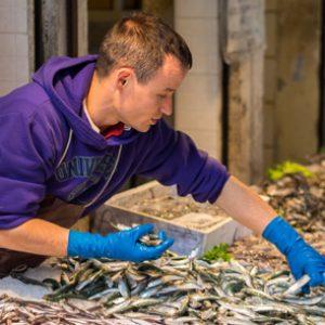 Fórmate con el aCurso de Pescadero + Curso de Encargado de Pescadería y conviértete en un experto de esta profesión