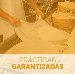 Formarse con el curso de elaboración de quesos con prácticas garantizadas