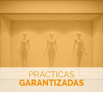 Aprende con el Máster en Escaparatismo + Máster en Decoración de Tiendas a crear composiciones únicas con prácticas garantizadas