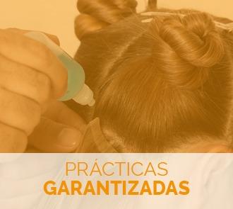 estudiar el curso en pelucas con prácticas garantizadas